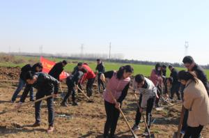 2019年植树节活动